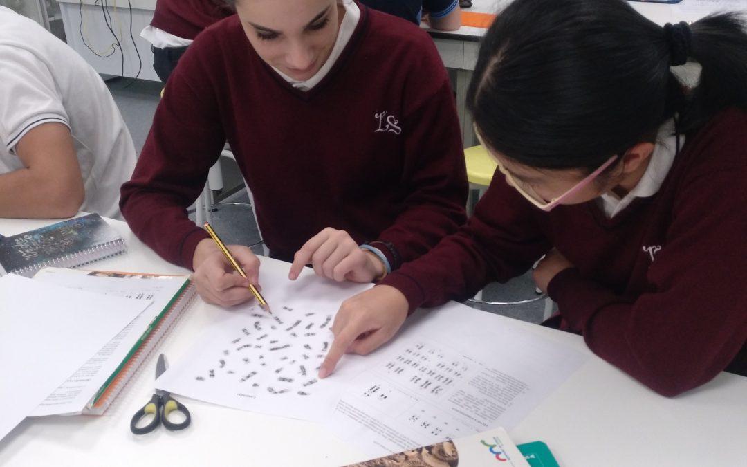 Identificando y ordenando cromosomas