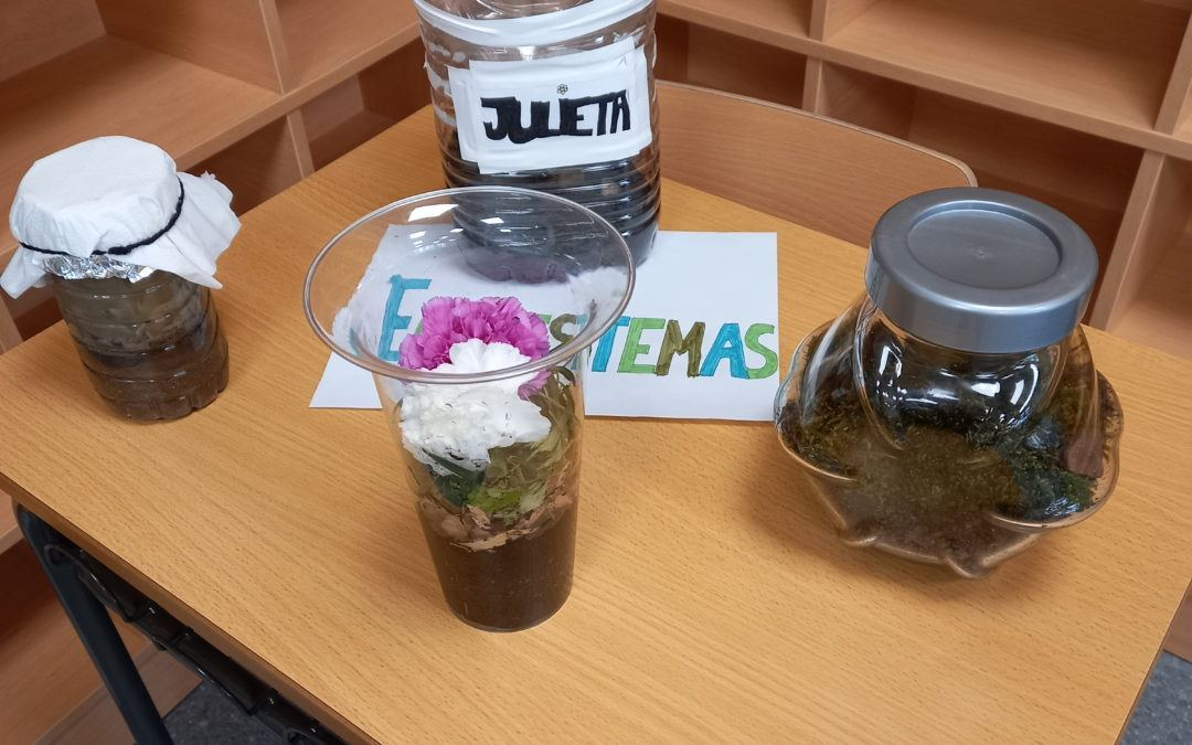Ciencias de la Tierra y el Medio Ambiente